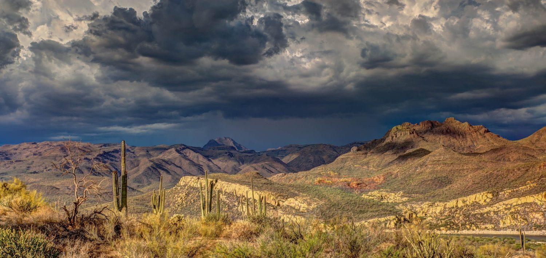 desert landscapes