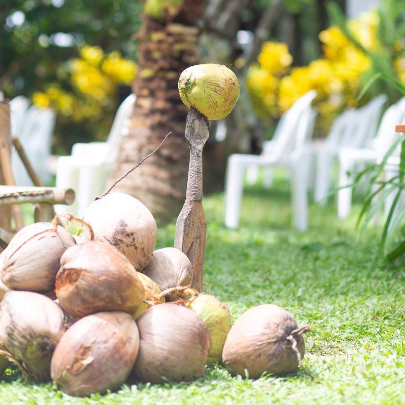 Coconut-Museum.jpeg-W-Koh-Samui-1