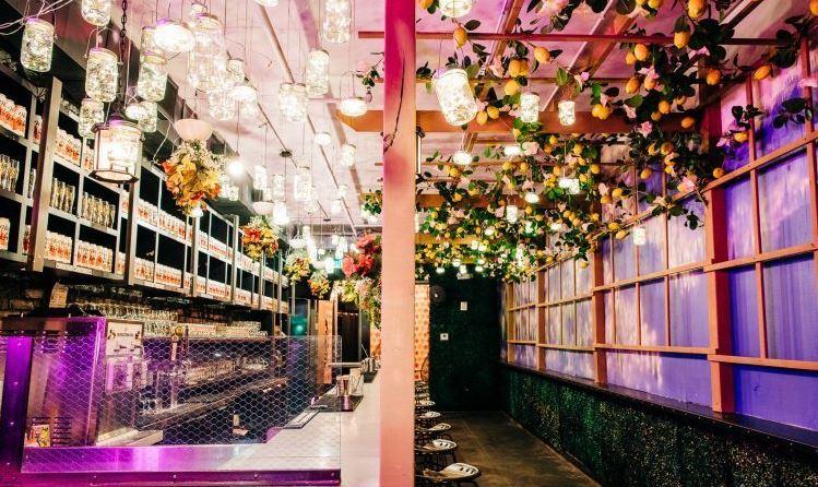 Dc Christmas Pop Up Bar.Washington D C W Hotels The Angle Life With A W Slant